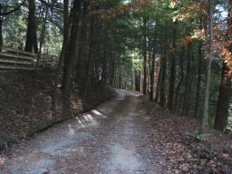 Driveway at Sautee Manor