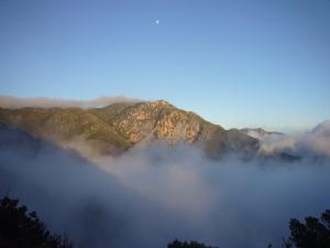 Ridge out of mist
