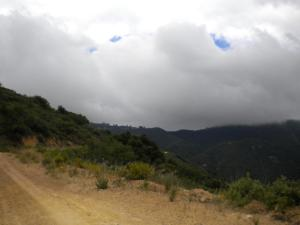 Fog blowing across Camino Ciello
