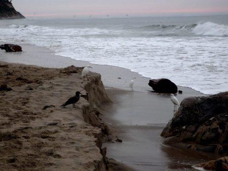 Sand Cliff