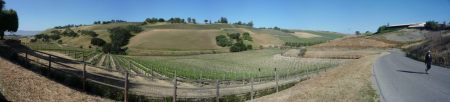 Ballard Hill Panorama