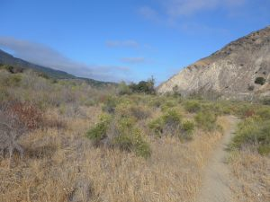 The great grey-green, greasy Santa Ynez River, all set about with sycamore-trees.