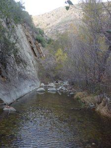 Manzana Creek