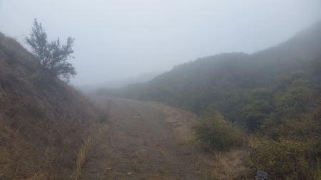 Foggy Camino Cielo