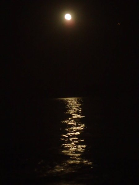Moonrise on the waters